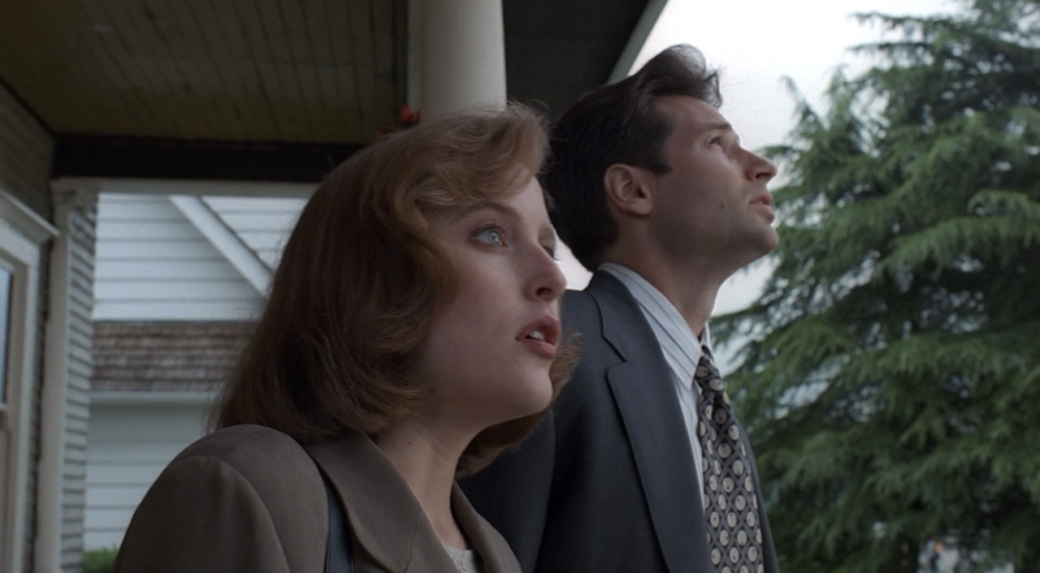 Mulder and Scully Look Skyward